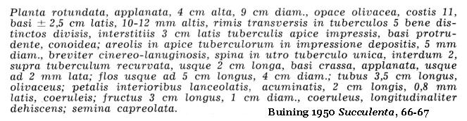 Buining 1950 Succulenta, 66, Latin diagnosis of G. vatteri